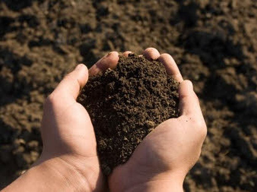 Soil Health Institute releases action plan